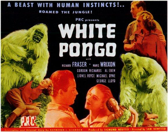 WhitePongo
